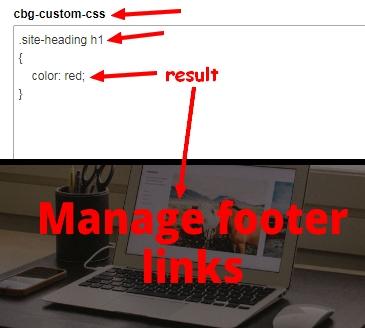 [Image: custom_css_1.jpg]